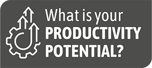 What is your productivity potential?